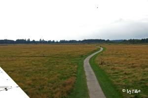 Schlachtfeld Cullodon Battelfield