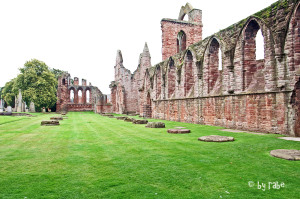 Arbroath Abbey 3