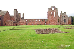 Arbroath Abbey 2