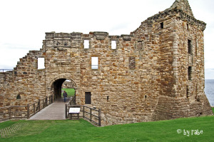 Castle St. Andrews 2