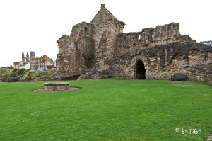 Castle St. Andrews 1