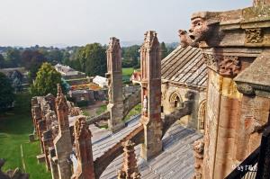 Melrose Abbey 4