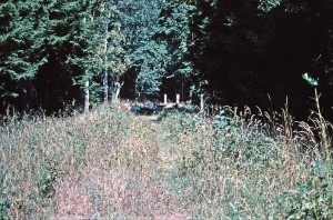 Grenze Polen Russland in Rominter Heide